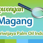 magang sriwijaya palm oil